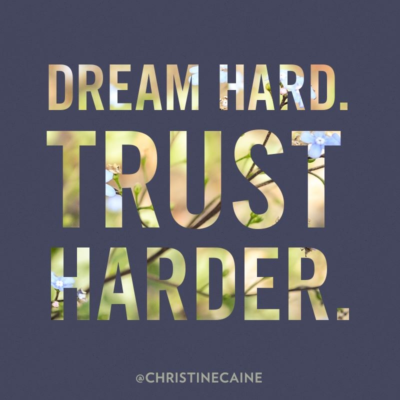 Dream Hard Trust Harder